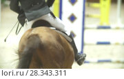 Купить «Rider on black horse galloping at show jumping competition, slow-motion», видеоролик № 28343311, снято 6 августа 2020 г. (c) Константин Шишкин / Фотобанк Лори