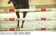 Купить «Female equestrian rider running on stallion at show jumping competition», видеоролик № 28343459, снято 6 августа 2020 г. (c) Константин Шишкин / Фотобанк Лори