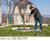 Купить «Мужчина сгребает граблями старую листву около дерева на дачном участке», фото № 28343791, снято 26 апреля 2018 г. (c) Гетманец Инна / Фотобанк Лори