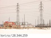Купить «Electricity pylons, Northern China, March 209.», фото № 28344259, снято 20 марта 2019 г. (c) Nature Picture Library / Фотобанк Лори