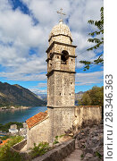 Montenegro. Kotor. The beautiful 15th-century Church of Our Lady of Remedy (Crkva Gospa od Zdravlja) with stone dome on the bell tower (UNESCO-protected) (2016 год). Стоковое фото, фотограф Виктория Катьянова / Фотобанк Лори