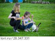 Купить «Две девочки кормят бездомную кошку», фото № 28347331, снято 27 апреля 2018 г. (c) Марина Володько / Фотобанк Лори