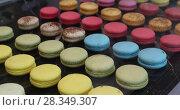 Купить «Close Up Colorful Macaroons Dessert In Bakery Shop», видеоролик № 28349307, снято 30 апреля 2018 г. (c) Ekaterina Demidova / Фотобанк Лори