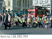 Купить «Group of school children wearing high visibility jackets crossing the road, sometimes called walking bus, Hyde Park Corner, London, UK, June 2015.», фото № 28355707, снято 23 мая 2018 г. (c) Nature Picture Library / Фотобанк Лори