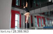 Купить «Young brunette woman performing pole dance in a studio», видеоролик № 28388963, снято 18 августа 2019 г. (c) Константин Шишкин / Фотобанк Лори