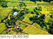Купить «Aerial view of deforested forest slopes replaced by farmland for subsistence agriculture in Malawi. March 2015.», фото № 28393543, снято 18 августа 2018 г. (c) Nature Picture Library / Фотобанк Лори