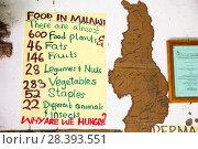 Купить «The Moet school in Mangochi, Malawi. Moet, stands for Mangochi Orphans Educational Training. The school runs on permaculture lines, showing pupils how...», фото № 28393551, снято 19 сентября 2018 г. (c) Nature Picture Library / Фотобанк Лори