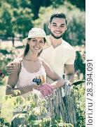 Купить «Family spends their summer vacation in the country», фото № 28394091, снято 19 марта 2019 г. (c) Яков Филимонов / Фотобанк Лори