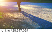 Купить «Sport man running at asphalt road. Rural city park. Green tree forest and sun rays on horizon.», видеоролик № 28397039, снято 9 апреля 2018 г. (c) Александр Маркин / Фотобанк Лори