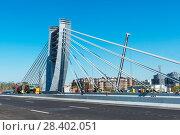 Купить «Пилоны моста Бетанкура. Санкт-Петербург», эксклюзивное фото № 28402051, снято 12 мая 2018 г. (c) Александр Щепин / Фотобанк Лори