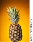 Купить «Pineapple with crown of green leaves on orange background», фото № 28409715, снято 22 декабря 2017 г. (c) Сергей Молодиков / Фотобанк Лори