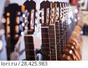 Купить «row of new acoustic guitars in music shop», фото № 28425983, снято 29 марта 2017 г. (c) Татьяна Яцевич / Фотобанк Лори