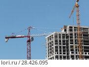 Купить «Строительство нового жилого комплекса на границе с Москвой в районе Мякинино (2018 год)», эксклюзивное фото № 28426095, снято 13 мая 2018 г. (c) Дмитрий Неумоин / Фотобанк Лори