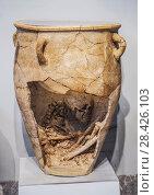 Купить «Пифос - сосуд для захоронений. Крит, Греция. Археологический музей Ираклиона», фото № 28426103, снято 5 июня 2017 г. (c) Наталья Волкова / Фотобанк Лори