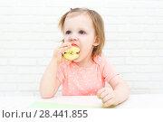 Купить «Cute little 2 years girl eats apple», фото № 28441855, снято 12 февраля 2018 г. (c) ivolodina / Фотобанк Лори