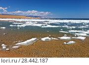 Купить «A brightl spring landscape with melting white ice on the sandy beach of Olkhon Island of the Siberian Lake Baikal on a sunny warm day», фото № 28442187, снято 19 мая 2018 г. (c) Виктория Катьянова / Фотобанк Лори