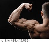 Купить «Bodybuilder in good shape against a dark background», фото № 28443083, снято 16 марта 2018 г. (c) Restyler Viacheslav / Фотобанк Лори