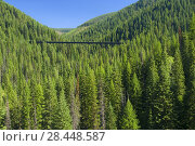 Купить «Kelly Creek Trestle, Hiawatha Rail Trail, St Joe National Forest, Idaho.», фото № 28448587, снято 16 августа 2008 г. (c) age Fotostock / Фотобанк Лори
