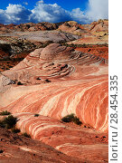 Купить «Sandstone coloured layers in Valley of Fire State Park, Nevada, USA, February 2014.», фото № 28454335, снято 27 мая 2018 г. (c) Nature Picture Library / Фотобанк Лори