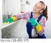 Купить «portrait of young woman cleaning», фото № 28455175, снято 24 октября 2018 г. (c) Яков Филимонов / Фотобанк Лори
