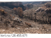 Купить «Valbacol, canyon after forest fire, Etang de Berre. Provence, France. October 2016.», фото № 28455671, снято 16 июля 2018 г. (c) Nature Picture Library / Фотобанк Лори