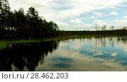 Купить «Swamp Viru Raba in Estonia», видеоролик № 28462203, снято 18 октября 2016 г. (c) BestPhotoStudio / Фотобанк Лори