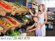 Купить «Glad mother with daughter shopping various veggies», фото № 28467879, снято 27 мая 2019 г. (c) Яков Филимонов / Фотобанк Лори