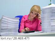 Девушка в офисе среди пачек документов считает на калькуляторе. Стоковое фото, фотограф Арестов Андрей Павлович / Фотобанк Лори