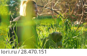 Купить «A girl is stroking a little dog, bright sunlight, summer day», видеоролик № 28470151, снято 24 сентября 2018 г. (c) Константин Шишкин / Фотобанк Лори