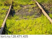 Купить «Rails out of order overgrown with green grass in Poland», фото № 28471435, снято 22 апреля 2018 г. (c) easy Fotostock / Фотобанк Лори