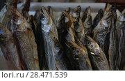 Купить «Вяленая соленая рыба корюшка на прилавке рыбного магазина», видеоролик № 28471539, снято 20 мая 2018 г. (c) А. А. Пирагис / Фотобанк Лори