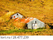 Купить «Traditional turf covered farm buidlings in the Skaftafell National Park, Iceland. September 2010.», фото № 28477239, снято 16 августа 2018 г. (c) Nature Picture Library / Фотобанк Лори
