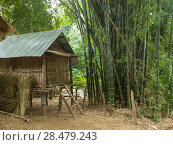 Купить «Hut in bamboo forest, Ban Gnoyhai, Luang Prabang, Laos», фото № 28479243, снято 21 сентября 2018 г. (c) Ingram Publishing / Фотобанк Лори