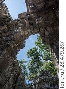 Купить «Ruins of Ta Prohm Temple, Angkor Archaeological Park, Krong Siem Reap, Siem Reap, Cambodia», фото № 28479267, снято 18 декабря 2016 г. (c) Ingram Publishing / Фотобанк Лори