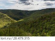 Купить «Scenic view of trees on mountains, Cabot Trail, Cape Breton Highlands National Park, Cape Breton Island, Nova Scotia, Canada», фото № 28479315, снято 12 июня 2016 г. (c) Ingram Publishing / Фотобанк Лори