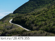 Купить «Scenic view of a mountain road, Pleasant Bay, Cape Breton Highlands National Park, Cape Breton Island, Nova Scotia, Canada», фото № 28479355, снято 12 июня 2016 г. (c) Ingram Publishing / Фотобанк Лори