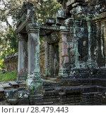 Купить «Stones ruins of Banteay Kdei, Angkor, Siem Reap, Cambodia», фото № 28479443, снято 20 декабря 2016 г. (c) Ingram Publishing / Фотобанк Лори