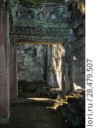 Купить «Ruins of temple, Bayon Temple, Angkor Thom, Siem Reap, Cambodia», фото № 28479507, снято 20 декабря 2016 г. (c) Ingram Publishing / Фотобанк Лори