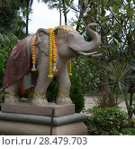 Купить «Statue of elephant, Koh Samui, Surat Thani Province, Thailand», фото № 28479703, снято 5 декабря 2016 г. (c) Ingram Publishing / Фотобанк Лори