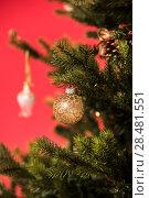 Купить «Christmas Tree on red background decorated with golden balls toys and bows», фото № 28481551, снято 3 ноября 2014 г. (c) Ingram Publishing / Фотобанк Лори
