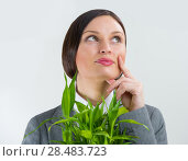 Adult business woman holding lucky bamboo plant symbol of success. Business growing concept. Стоковое фото, фотограф Kirill Kedrinskiy / Ingram Publishing / Фотобанк Лори