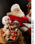 Купить «Santa Claus sitting at home at comfortable armchair holding envelope and reading children's letters and wishes and choosing toys from big sack near him», фото № 28484967, снято 12 января 2013 г. (c) Ingram Publishing / Фотобанк Лори