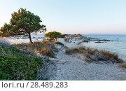 Sunset Aegean sea coast (Chalkidiki, Greece). (2016 год). Редакционное фото, фотограф Юрий Брыкайло / Фотобанк Лори