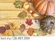 Купить «Ripe pumpkins, onions, garlic and ears of cereals on a wooden background. Autumn rustic still life in flatlay style», фото № 28491099, снято 20 апреля 2018 г. (c) Виктория Катьянова / Фотобанк Лори