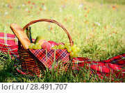 Купить «Picnic basket fool of fruits bread and wine with floral meadow at background», фото № 28491707, снято 30 июня 2012 г. (c) Ingram Publishing / Фотобанк Лори
