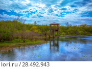 Купить «White Lake at Cullinan Park in sugarland near Houston Texas», фото № 28492943, снято 22 октября 2018 г. (c) Ingram Publishing / Фотобанк Лори