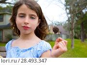 Купить «Girl portrait with american sweetgum spiked fruit on park», фото № 28493347, снято 20 июля 2018 г. (c) Ingram Publishing / Фотобанк Лори