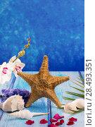 Купить «Starfish seashells with hyacinth flower and white orchid on blue wood  background», фото № 28493351, снято 27 марта 2019 г. (c) Ingram Publishing / Фотобанк Лори