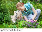 Купить «Young woman with favorite dog», фото № 28494687, снято 21 августа 2013 г. (c) Ingram Publishing / Фотобанк Лори