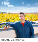 Купить «Mediterranean vineyard harvest farmer farming cabernet sauvignon grape field in Spain», фото № 28495403, снято 17 октября 2013 г. (c) Ingram Publishing / Фотобанк Лори